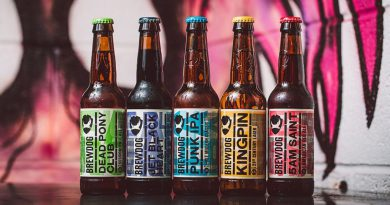 BrewDog world's largest craft brewer to enter India with 35 pubs 4
