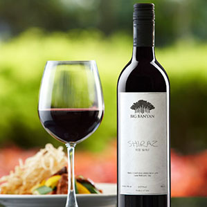 Top 5 wines in India 5
