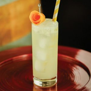 4 All-time favorite gin cocktails to help you beat the summer heat! 4