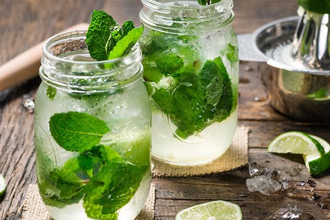 5 Facts about Mojito 1