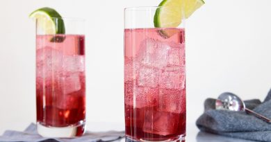 4 All-time favorite gin cocktails to help you beat the summer heat! 9