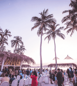 Top best 5 coolest bars in Goa! 2