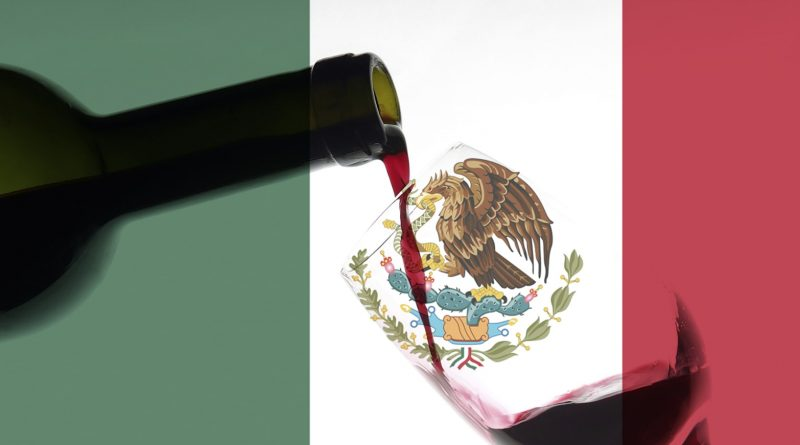 These 4 mexican wines are worth trying 9