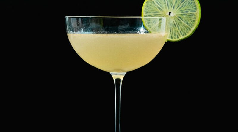"""gin gimlet cocktail with a slice of lemon"">"