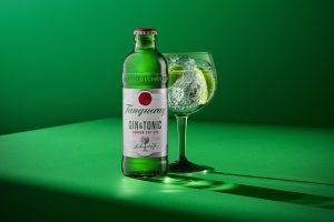 Best gin under Rs 3000 3