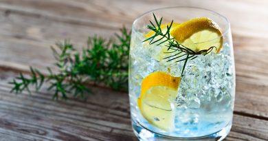 Best gin under Rs 3000 7