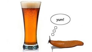 Interesting uses of beer you'll definitely love! 4