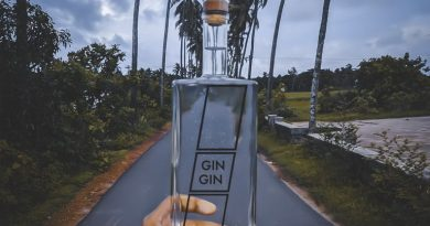 Goa is new hub for India made Gin 2