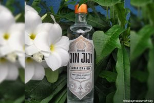 Goa is new hub for India made Gin 3