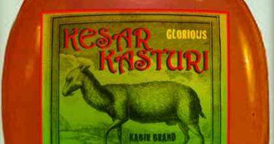 Rajasthan is reviving local heritage brands 3