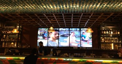 Bar Review: Wing-Ding Noida 3