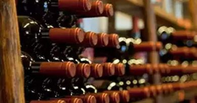 Make available beer and wine at departmental stores: Delhi Panel 2