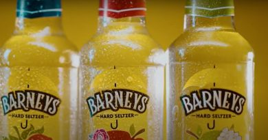 Alco Beverage Startup Barbrew raises INR 2.5 CR 4